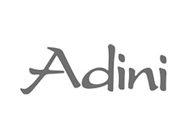 Adini Discount Codes
