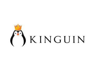 Kinguin Discount Codes